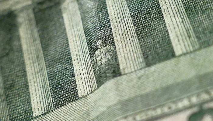 macro shot of a dollar bill.